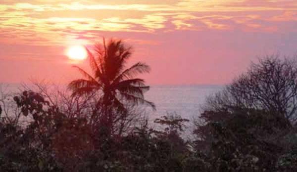 sunset-treeline