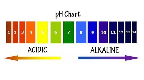 pH-Chart1