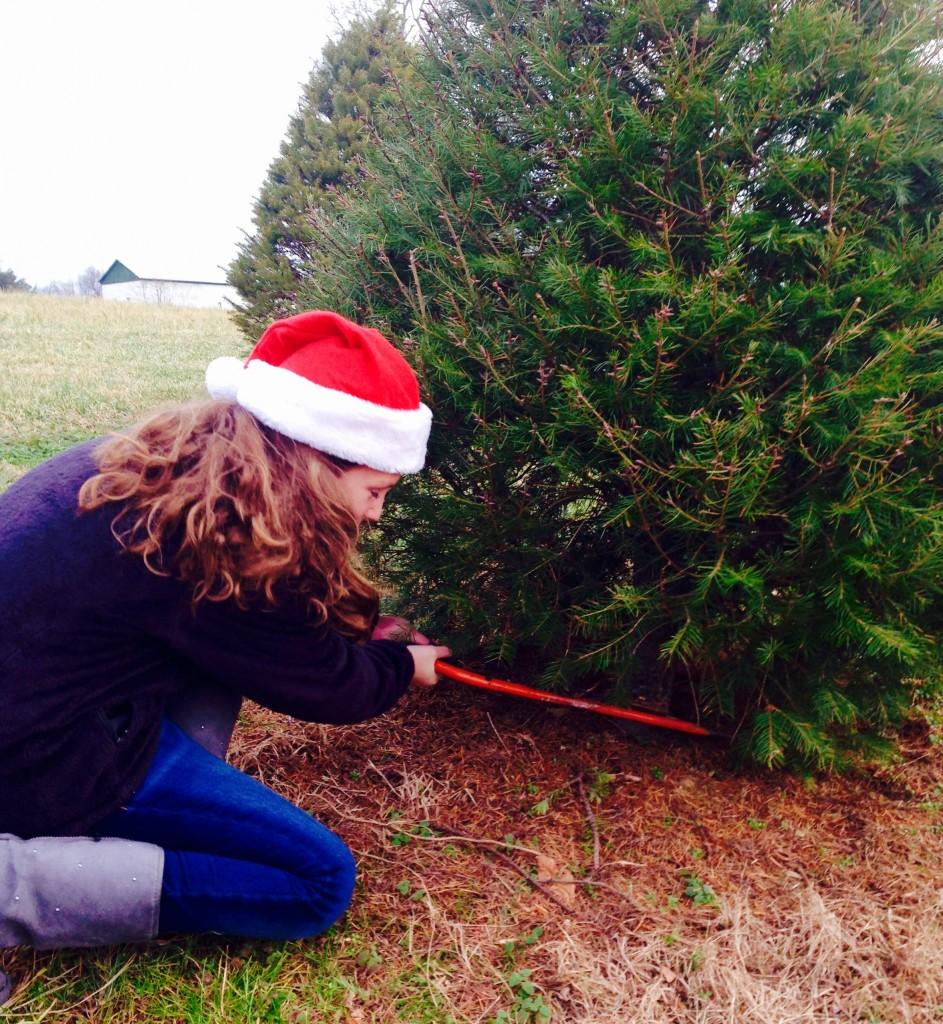 kate chopping tree